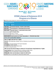 Program at a Glance